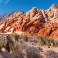 Image Red Rock Canyon in Nevada, USA - The most beautiful canyons in the world