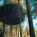 Image Tree hotel, Sweden - The Most Unusual Hotels in Trees in the World