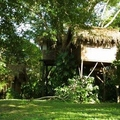 Image The Parrot Nest Hotel, Belize - The Most Unusual Hotels in Trees in the World