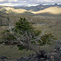 Image The Patagonia Desert - The Largest Deserts in the World