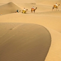 Image The Thar Desert  - The Largest Deserts in the World