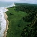 Image Loango National Park, Gabon - The Best Places for a Safari in Africa