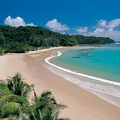 Image The Patong Beach - The Best Places to Visit in Phuket, Thailand