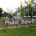 Image Butterfly Farm - The Best Places to Visit in Phuket, Thailand