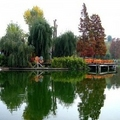 Image Youths' Park( Parcul Tineretului)  - The Best Places to Visit in Bucharest, Romania