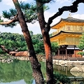 Image Kyoto, Japan - Top 10 places to visit for introverted people